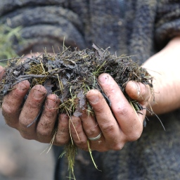 Creating Compost with Ron Spendal