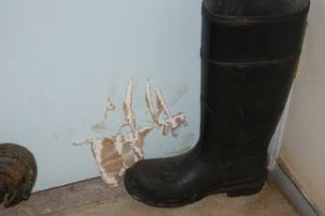 A large black boot stands next to a blue wall in the cheese room with bear claw scratches near the floor.
